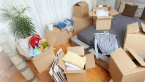 Packers and Movers Tingre Nagar Pune