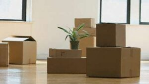 Packers and Movers from Pune to Agra