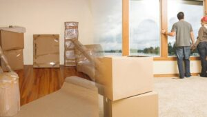 Packers and Movers from Pune to Eluru