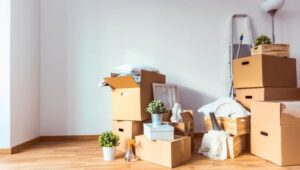Packers and Movers from Pune to Kakinada