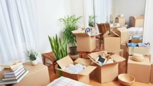 Packers and Movers from Pune to Kochi