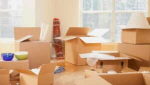 Packers and Movers from Pune to Mysore
