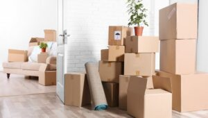 Packers and Movers from Pune to Nellore