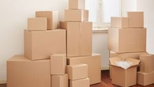 Packers and Movers from Pune to Bhilai