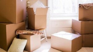 Packers and Movers from Pune to Gaya