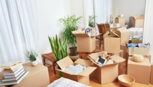 Packers and Movers from Pune to Shrinagar