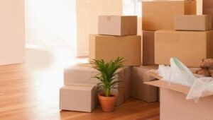 Packers and Movers from Pune to Varanasi