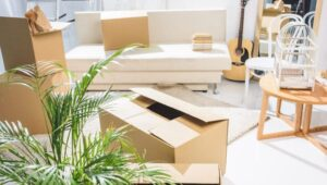 Packers and Movers Pirangut Pune