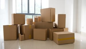 Packers and Movers from Pune to Balasore
