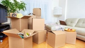 Packers and Movers from Pune to Bharuch