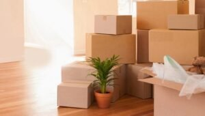Packers and Movers from Pune to Bidar
